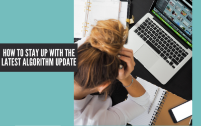 How to Stay Up with the Latest Algorithm Update